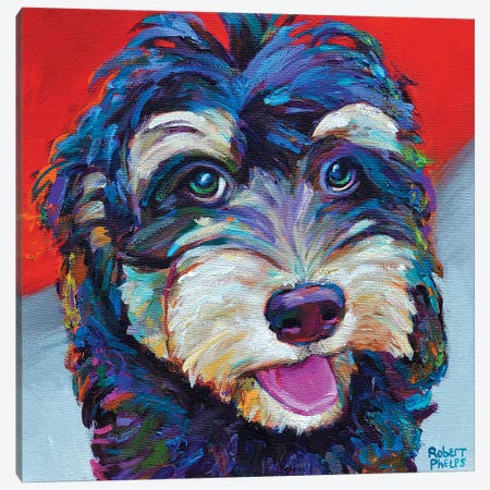 Labradoodle Canvas Print #RPH44} by Robert Phelps Art Print
