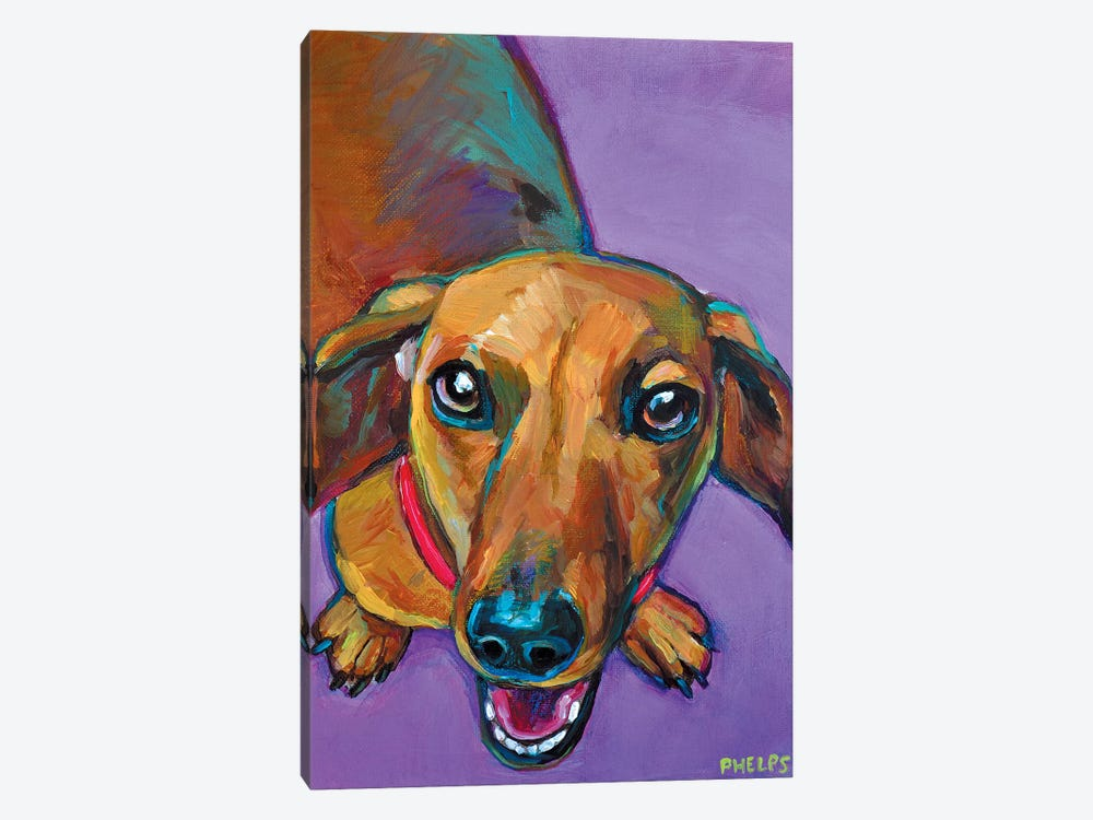 Lucy The Dachshund by Robert Phelps 1-piece Canvas Art Print
