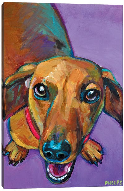 Lucy The Dachshund Canvas Art Print