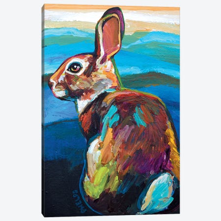 Mountain Bunny Canvas Print #RPH48} by Robert Phelps Canvas Art