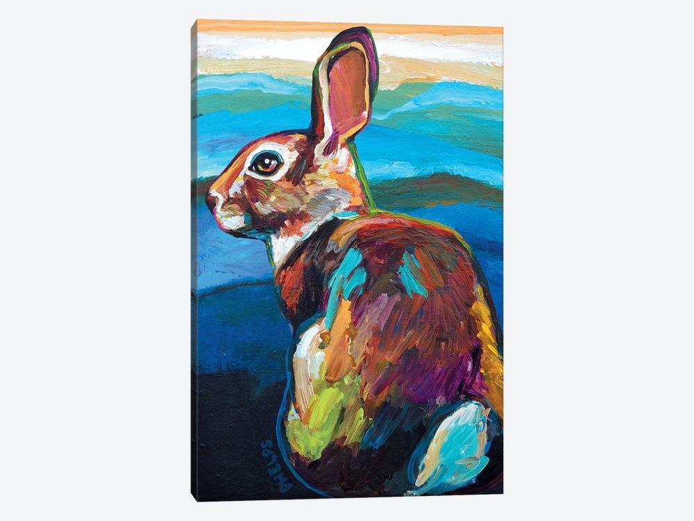Mountain Bunny by Robert Phelps 1-piece Canvas Art