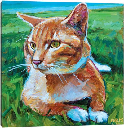 Orange Tabby Canvas Art Print