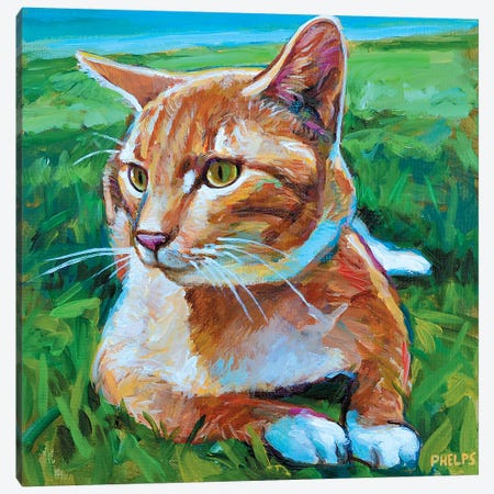 Orange Tabby 3-Piece Canvas #RPH50} by Robert Phelps Canvas Art Print