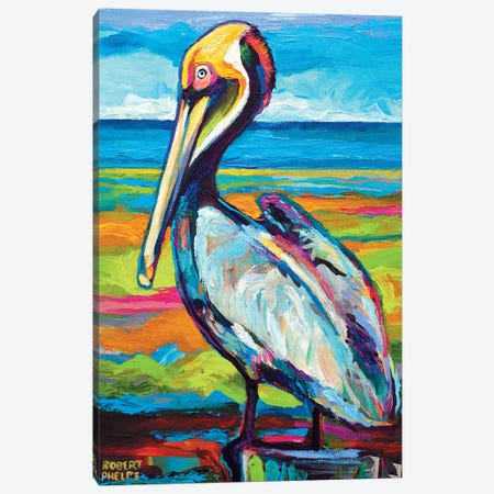 Pelican Canvas Print #RPH52} by Robert Phelps Canvas Art Print