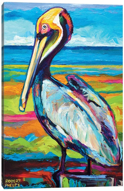 Pelican Canvas Art Print