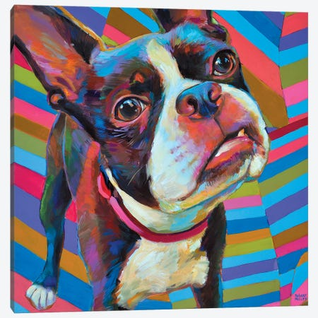 Psychedelic Boston Terrier Canvas Print #RPH55} by Robert Phelps Canvas Artwork