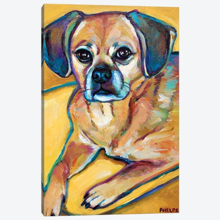 Puggle Canvas Print #RPH56} by Robert Phelps Canvas Artwork