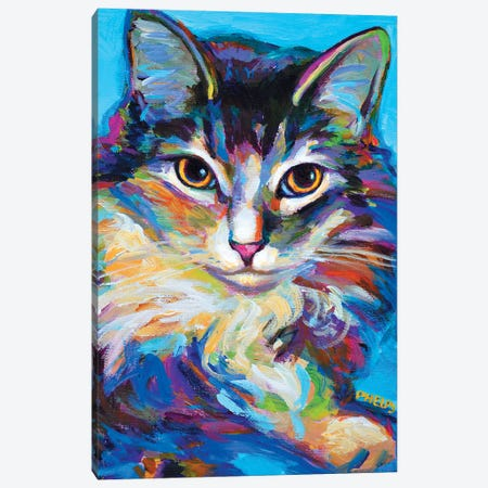 Ragdoll Canvas Print #RPH57} by Robert Phelps Canvas Art