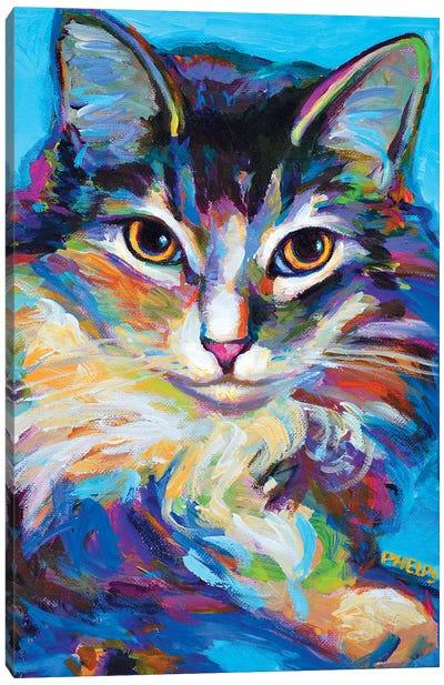 Ragdoll Canvas Art Print