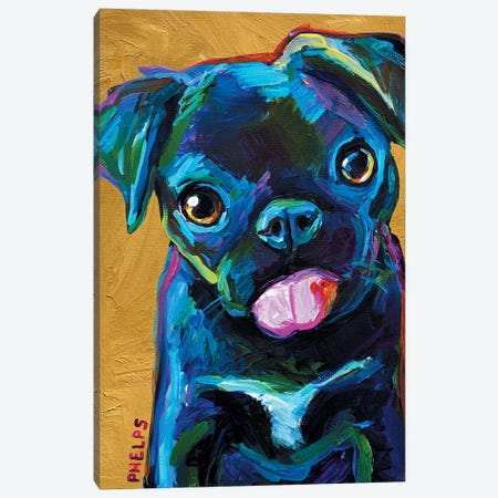 Black Pug Puppy Canvas Print #RPH5} by Robert Phelps Canvas Wall Art