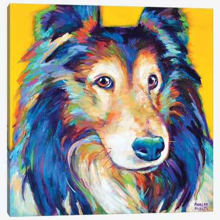 Sheltie II Canvas Print #RPH63} by Robert Phelps Canvas Wall Art