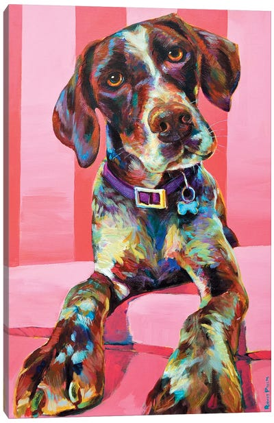 Shorthair Pointer Canvas Art Print