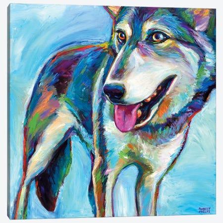 Snow Wolf Canvas Print #RPH67} by Robert Phelps Canvas Art Print