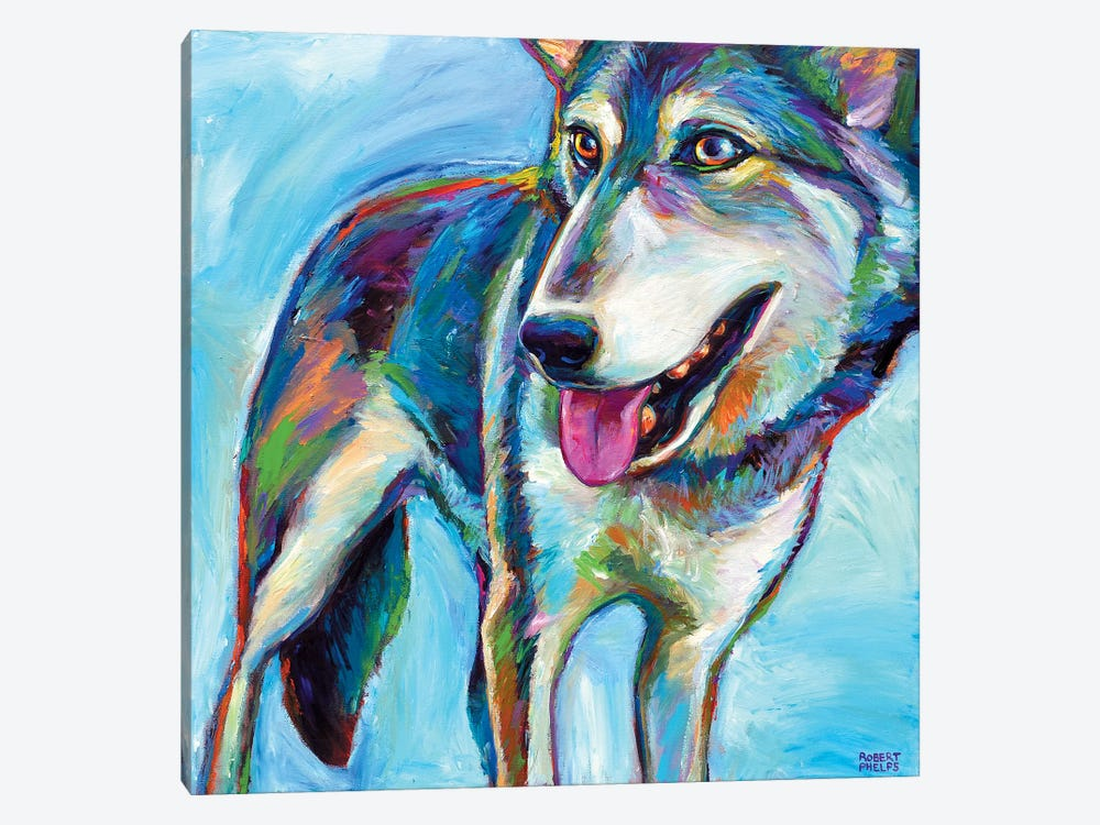 Snow Wolf by Robert Phelps 1-piece Canvas Print