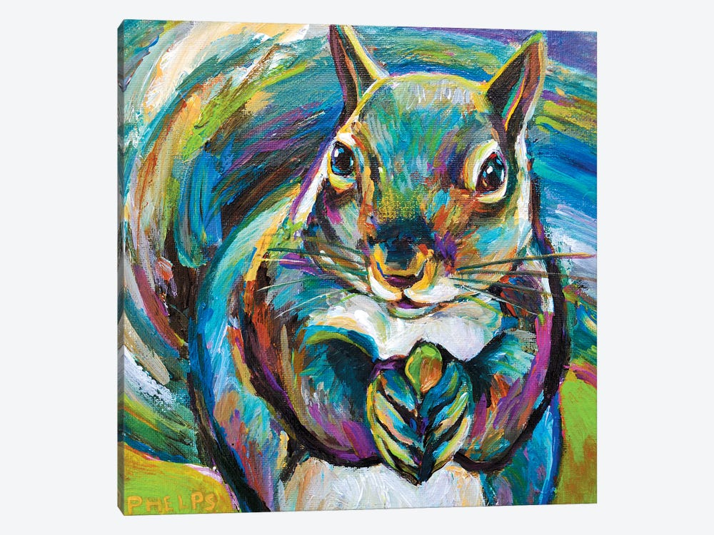 Squirrel by Robert Phelps 1-piece Canvas Art Print