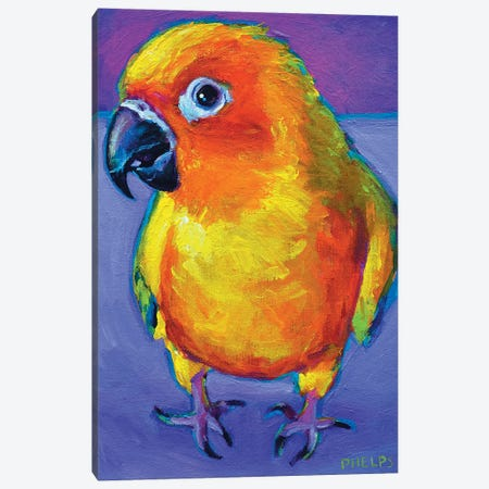 Sun Conure Canvas Print #RPH72} by Robert Phelps Art Print
