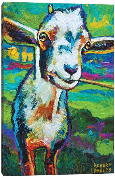 Theo The Goat Canvas Art Print