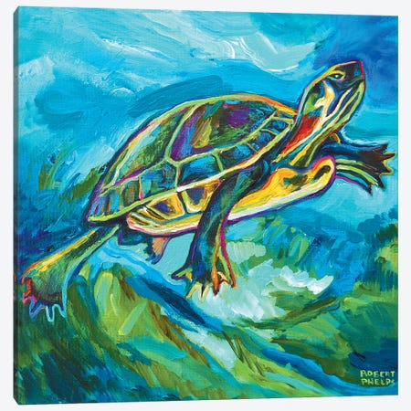 Turtle Canvas Print #RPH75} by Robert Phelps Canvas Wall Art