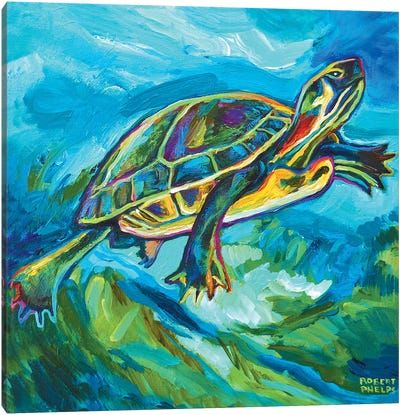 Turtle Canvas Art Print