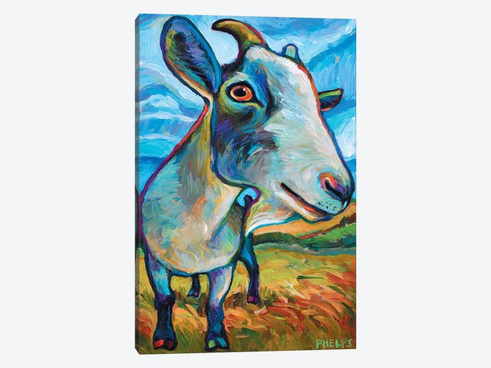 Van Goat by Robert Phelps 1-piece Canvas Print