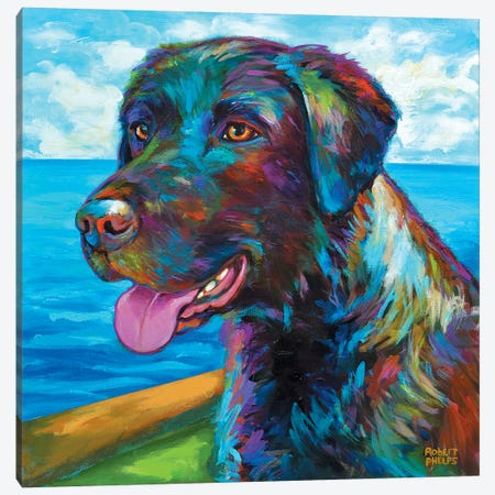 Wet Black Lab 3-Piece Canvas #RPH78} by Robert Phelps Art Print