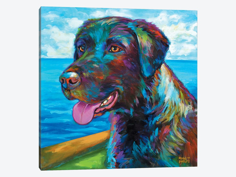 Wet Black Lab by Robert Phelps 1-piece Canvas Print