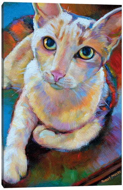White Cat Canvas Art Print