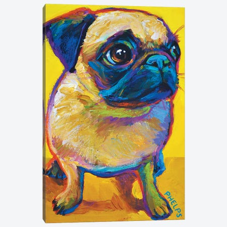 Yellow Pug Canvas Print #RPH81} by Robert Phelps Canvas Wall Art