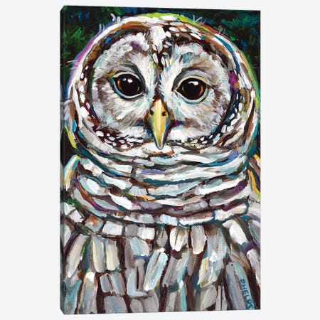Barred Owl Canvas Print #RPH83} by Robert Phelps Canvas Wall Art
