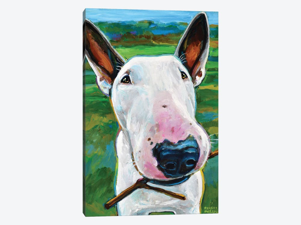 Bull Terrier with Stick by Robert Phelps 1-piece Canvas Artwork