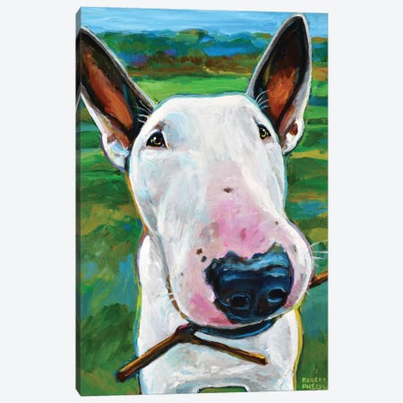 Bull Terrier with Stick Canvas Print #RPH84} by Robert Phelps Canvas Print