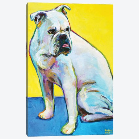 Bulldog On Yellow Canvas Print #RPH85} by Robert Phelps Canvas Print