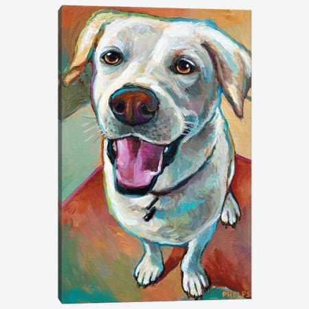 Blond Lab Canvas Print #RPH8} by Robert Phelps Canvas Art Print