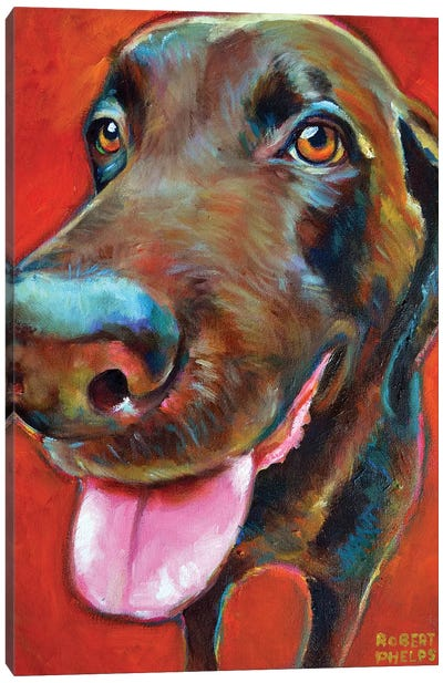 Chocolate Lab Canvas Art Print
