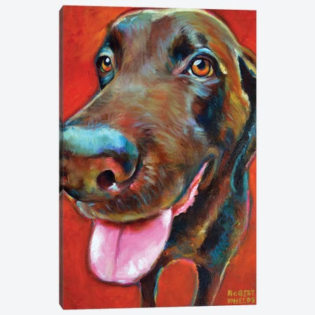 Chocolate Lab Canvas Print #RPH90} by Robert Phelps Canvas Print