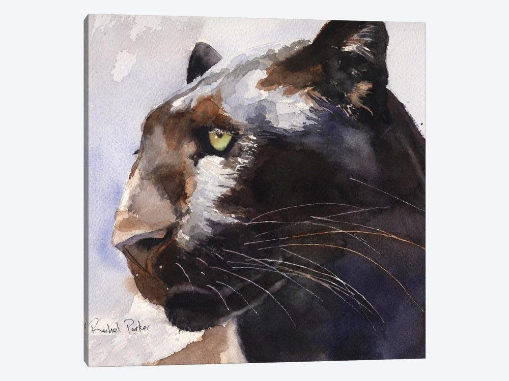 Black Panther by Rachel Parker 1-piece Art Print