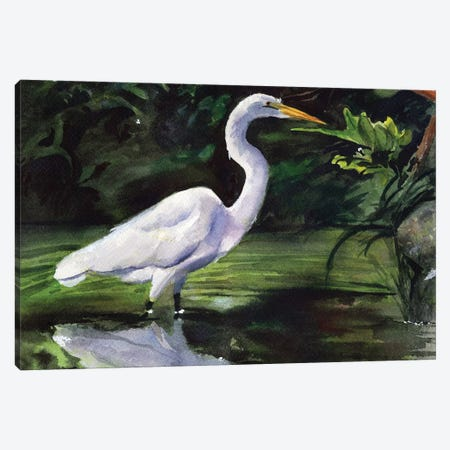 Egret Marsh Canvas Print #RPK102} by Rachel Parker Canvas Print