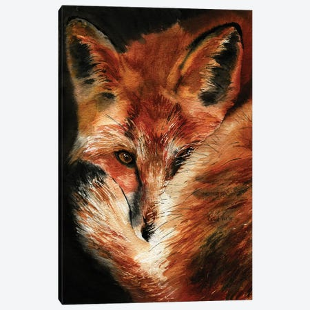 Fox Dreams Canvas Print #RPK103} by Rachel Parker Art Print