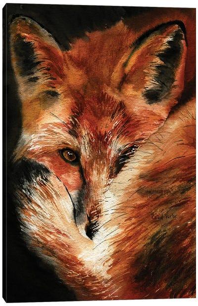 Fox Dreams Canvas Art Print