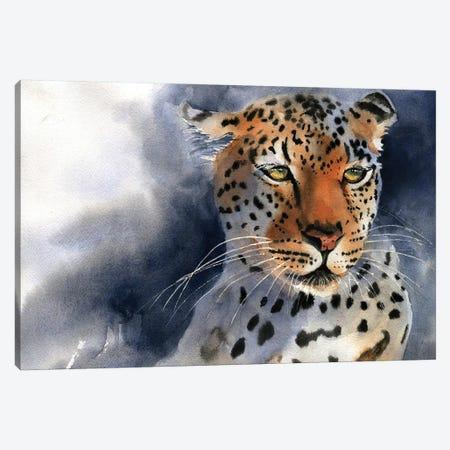 Leopard Thoughts Canvas Print #RPK106} by Rachel Parker Canvas Art