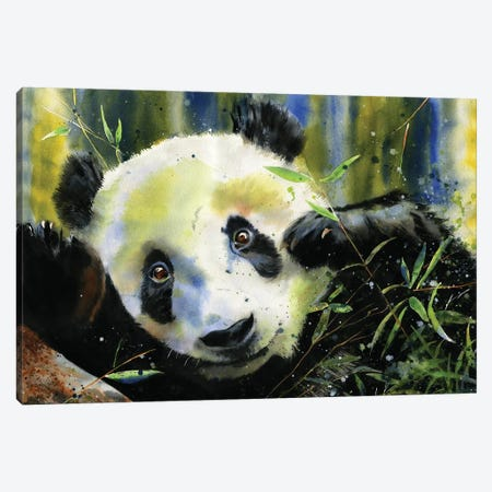 Panda Lunch Canvas Print #RPK110} by Rachel Parker Canvas Wall Art