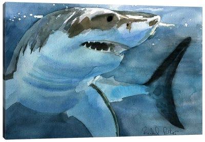 Sharky Canvas Art Print