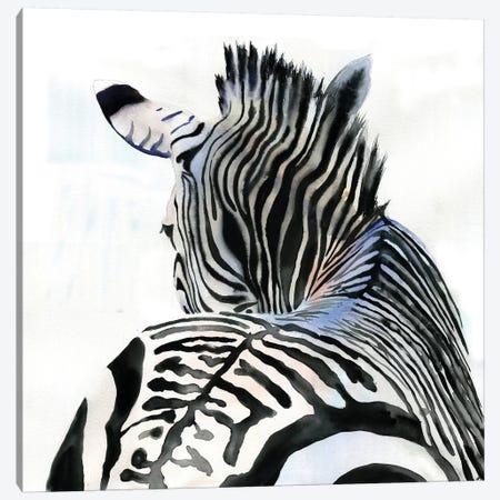 Zebra Contours Canvas Print #RPK116} by Rachel Parker Canvas Art Print