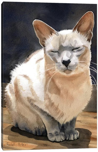 Peace Kitty Canvas Art Print