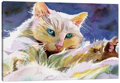 Persian Eyes Canvas Art Print