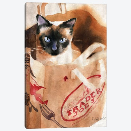 Bagged Siamese Canvas Print #RPK1} by Rachel Parker Canvas Wall Art