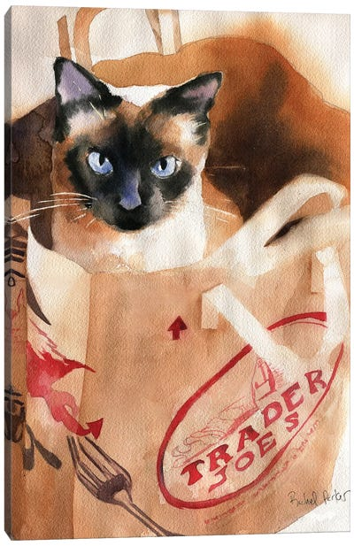 Bagged Siamese Canvas Art Print