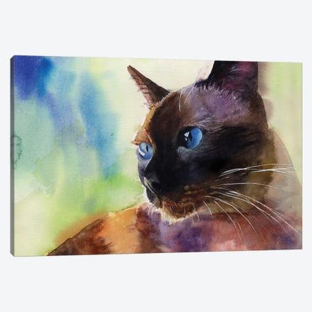 Siamese Lit Canvas Print #RPK20} by Rachel Parker Canvas Print