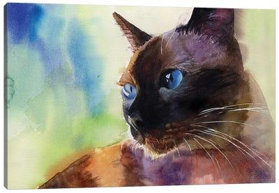 Siamese Lit Canvas Art Print