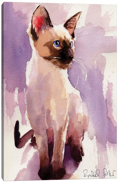 Siamese Sit With Lavender Canvas Art Print